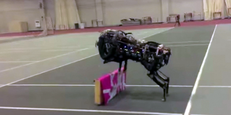PerroRobot